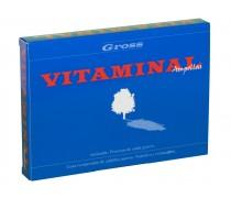 Vita minal anticaída 6 unidades